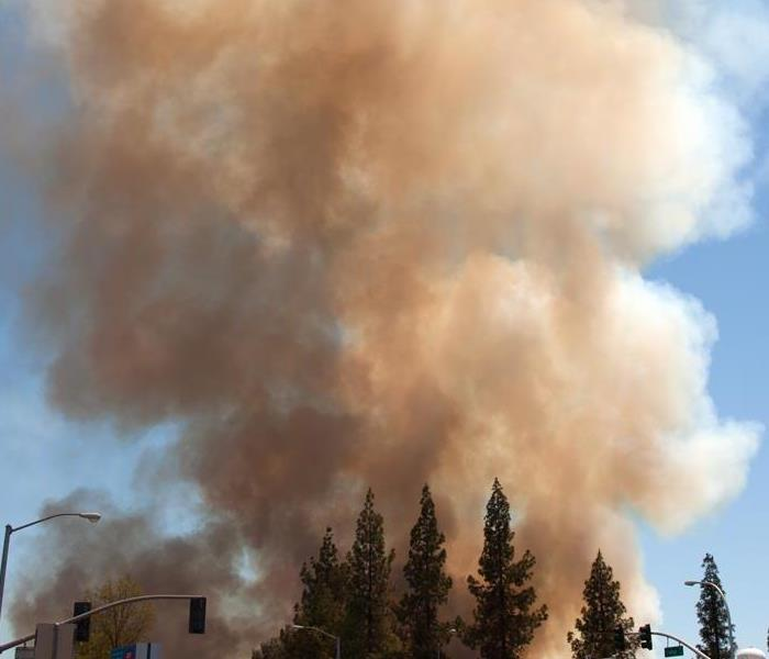 Fire Damage Spring Rain Could Increase California Wildfire Risk